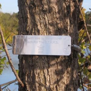 """""""Tree Memorial Marker"""""""